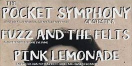 TPSO live in Norwich w/ Fuzz & the Felts, and Pink Lemonade