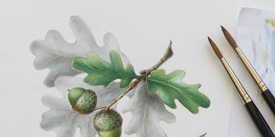 Botanical Drawing & Illustration Techniques