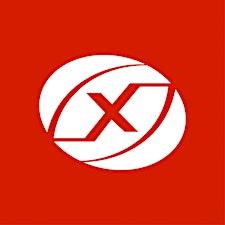 Nexus Institute of Creative Arts logo