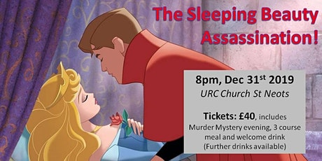 The Sleeping Beauty Assassination tickets
