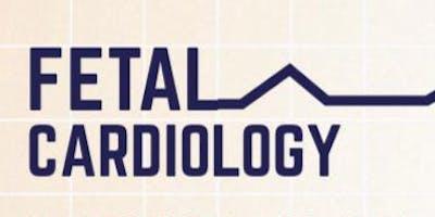 Fetal Cardiology Course