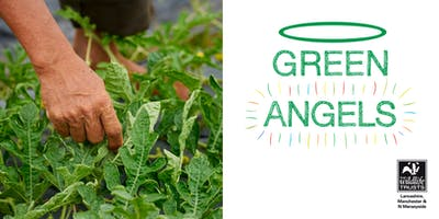 Green Angels Horticulture & Countryside Management Course