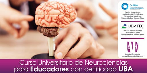 Curso Universitario de Neurociencias para Educadores con certificado UBA