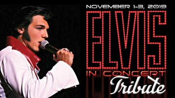 """Elvis In Concert"": A Tribute -- Dinner & Show"
