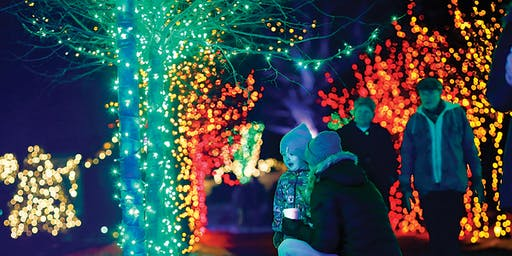 Winterlights at Naumkeag, Members Only Preview