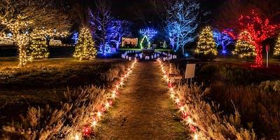 Winterlights at The Bradley Estate