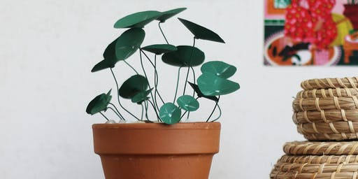 Atelier plante (pilea peperomioïde) en papier