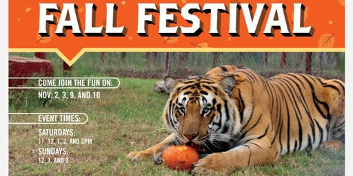 CARE 2019 Fall Festival