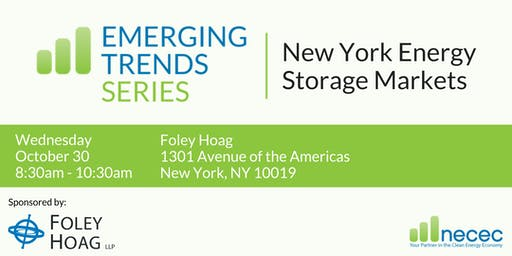 Emerging Trends Series: New York Energy Storage Markets