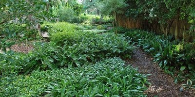 Sustainable Gardening for Your Home