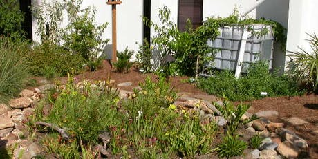 Rainwater Guardian Workshop at Boyd Hill Nature Preserve - Apr. 4, 2020 tickets