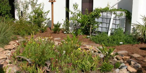 Rainwater Guardian Workshop at Boyd Hill Nature Preserve - Apr. 4, 2020