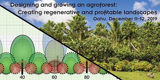 Designing and growing an agroforest—Oahu