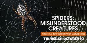 Spiders: Misunderstood Creatures – Greenville Zoo...
