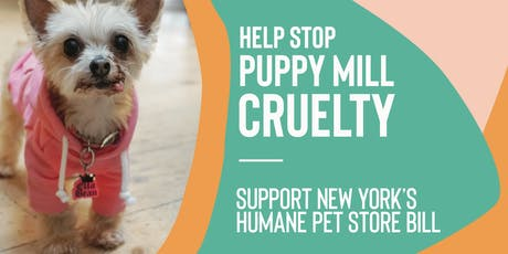 NY Pet Store Reform Act Advocacy Meeting (Suffolk County) tickets