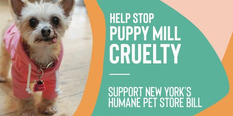 NY Pet Store Reform Act Advocacy Meeting (Nassau County) tickets