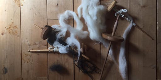 Wild Wooly Workshop