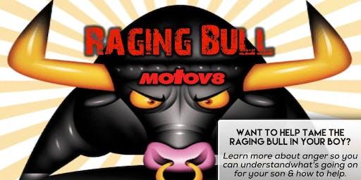 Raging Bull - Mount Gambier