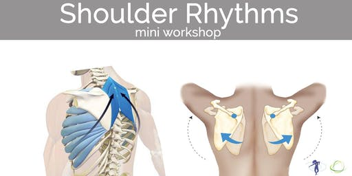 Shoulder Rhythms