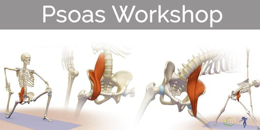 Strong, Supportive, Psoas
