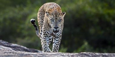 Sri Lanka Exposed with Craig Greer