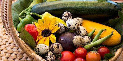 Heat-proof your garden