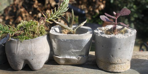 Concrete Plant Pots at the Craft Barn