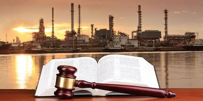 Houston Branch Lecture: Engineering Analysis When Litigation is Likely