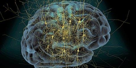 Wie tickt unser Gehirn? Europäische Forschung revolutioniert Neurowissenschaft und Informatik Tickets
