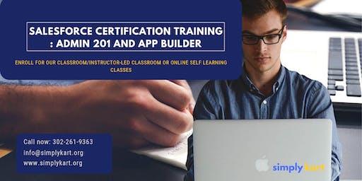 Salesforce Admin 201 & App Builder Certification Training in Dalhousie, NB