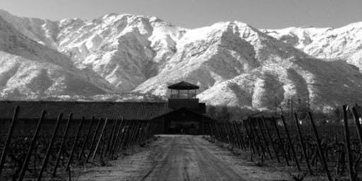 Winery Tasting with Sol de Sol & Aquitania of Chile
