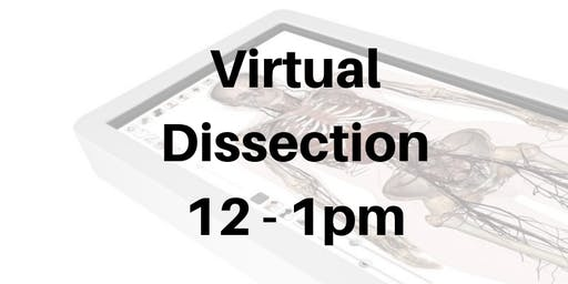 Virtual Dissection 12 - 1pm (1 award hour)