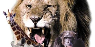 Lion Country Safari KOA