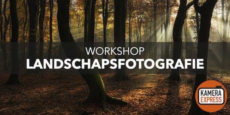 Workshop landschapsfotografie Speulderbos tickets