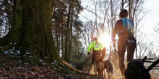 Norfolk Walking Festival: Cani Trek n Trail