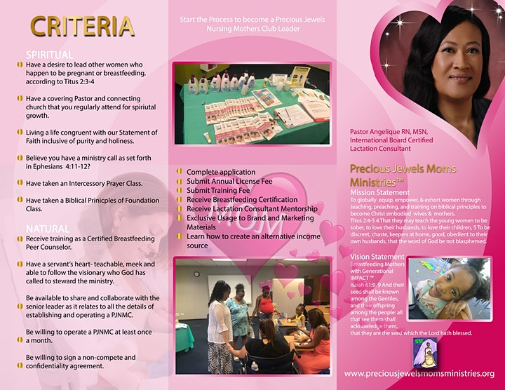 Breastfeeding Peer Counselor Moms Ministry Training image