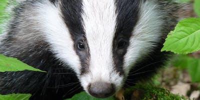 Scottish Badgers Level 1 Badger Surveyor Course - Moray