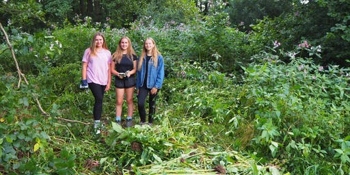 South Downs Youth Action for ancient woodland (near Chichester)