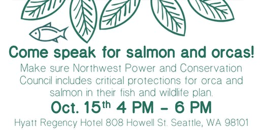 Come speak for salmon and orcas!