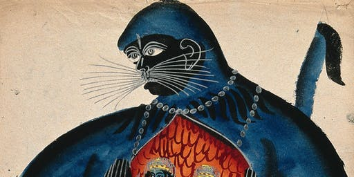 Bodies, Medicine, Imagination by Sam Guglani