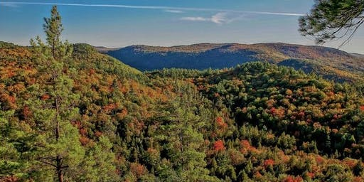 Fall into your Senses: Autumn Wellness Retreat