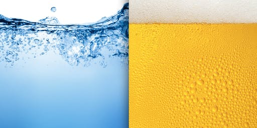 For the Love of Beer: An Ode to GVL Water