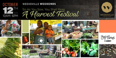 event image The Harvest Festival with OKO Farms