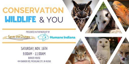 Conservation, Wildlife & You!