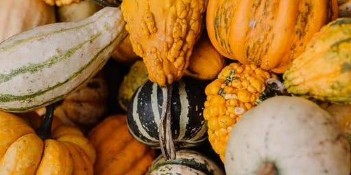 Il Posto with Altius Farms Presents: SQUASH, an ode to fall