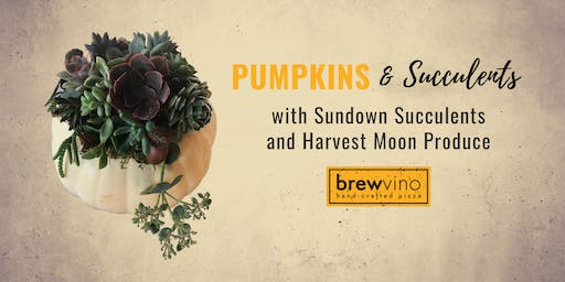 Pumpkin Succulent Make and Take Workshop at BrewVino
