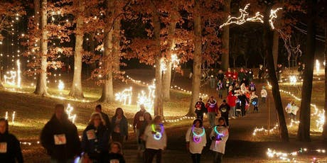 Festive Families: A Symphony of Lights Event tickets