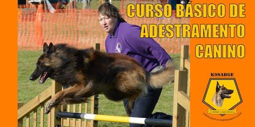 Curso Básico de Adestramento e Comportamento Canino