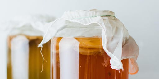 Probiotic Drinks Workshop