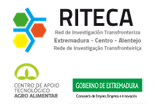RITECA logo